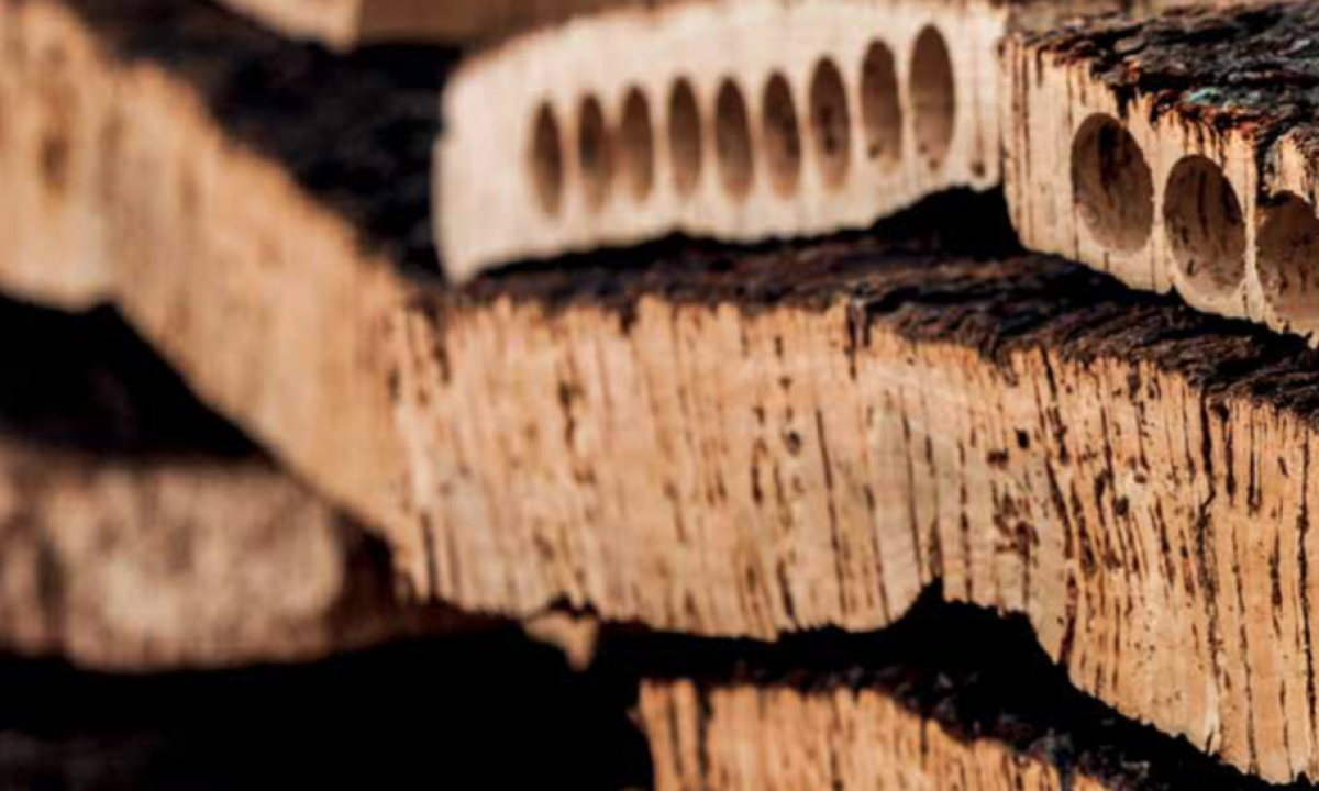uncork-power-of-cork-1024x545